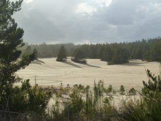 Dunes State park in Oregon